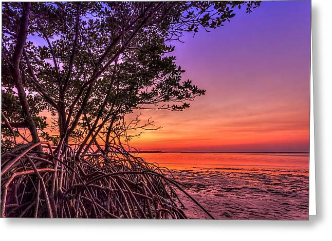 Sunset Palette Greeting Card by Marvin Spates