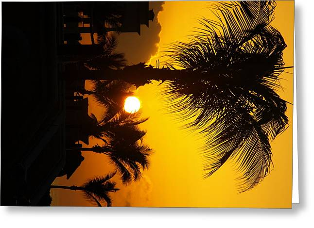 Sunset Palm Greeting Card by Randall Slinkard