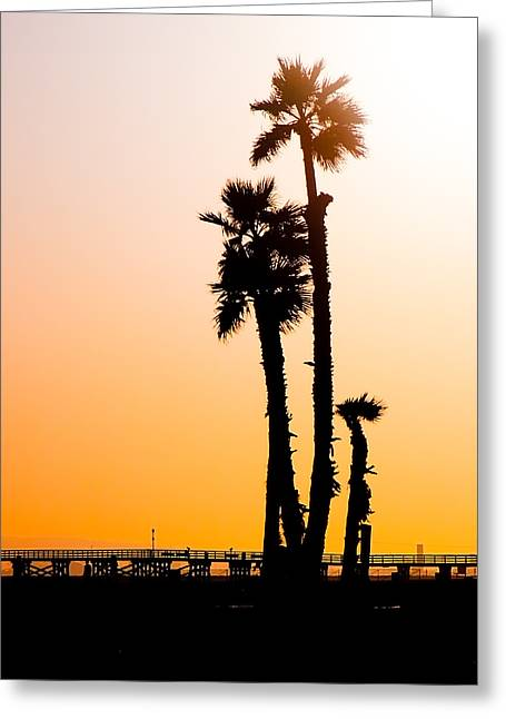 Sunset Palms Greeting Card
