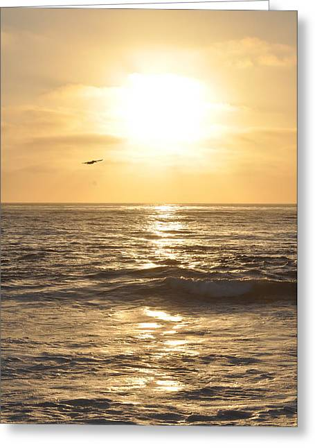 Sunset Pelican Silhouette Greeting Card