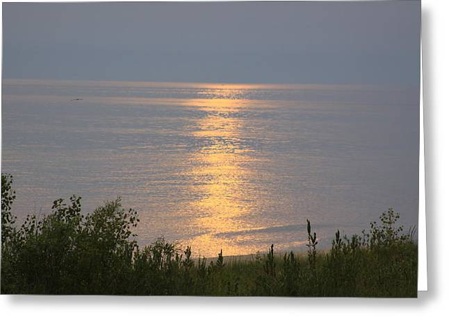 Sunset Reflections Greeting Card by Chuck Bailey