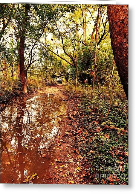 Sunset Reflections On The Old Jeep Trail Greeting Card