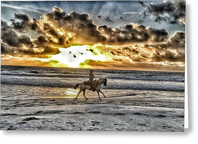 Sunset Ride Greeting Card by William Randolph