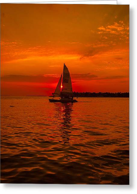 Sunset Sail Greeting Card by Dan Vidal