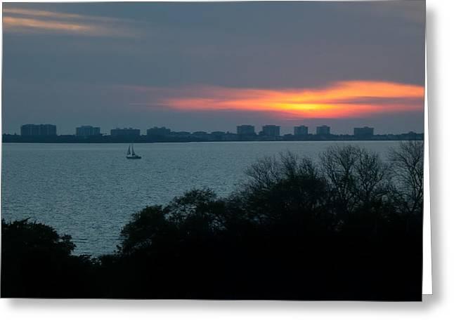 Sunset Sail On Sarasota Bay Greeting Card