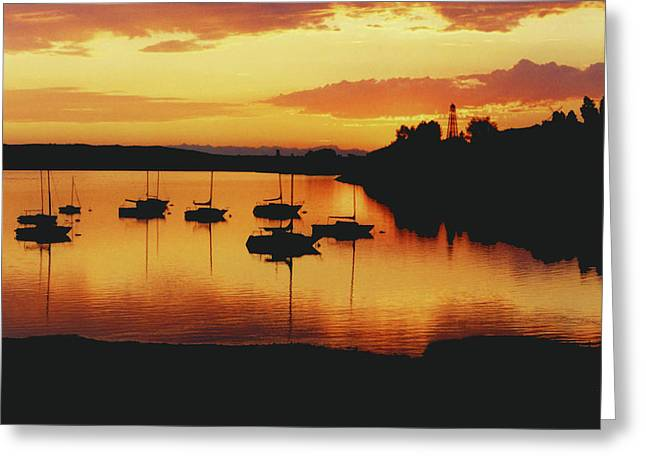 Glenmore Reservoir Greeting Cards - Sunset Sailboats Greeting Card by Al Bourassa
