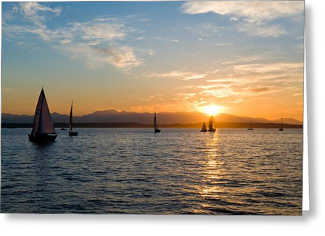 Sunset Sailboats Greeting Card by Tom Dowd