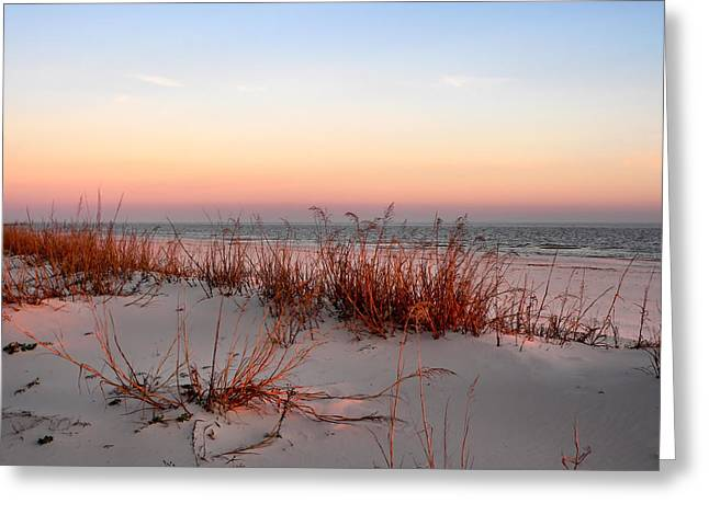 Sunset Sea Oats  Greeting Card