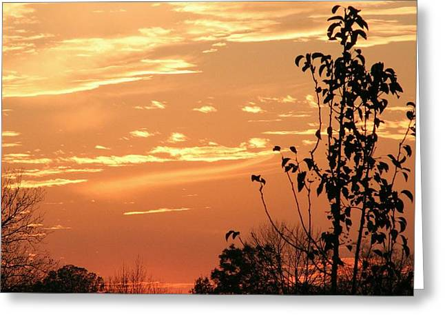 Sunset Series No. 1 Greeting Card by Christina Martinez