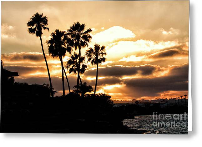Sunset Silhouette In San Diego  Greeting Card