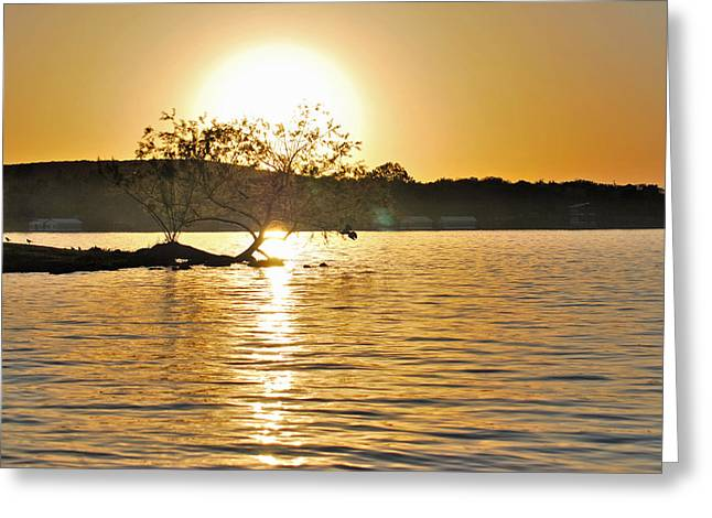 Greeting Card featuring the photograph Sunset Silhouette by Teresa Blanton