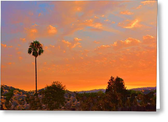 Sunset Solano County Greeting Card by Josephine Buschman