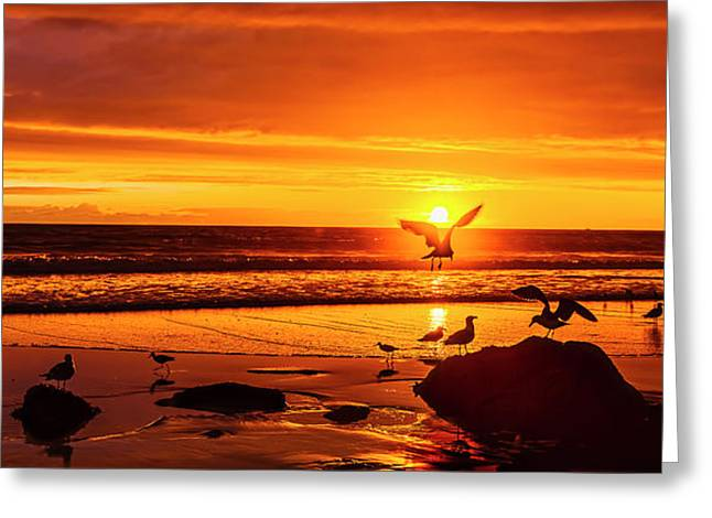 Sunset Surprise Pano Greeting Card