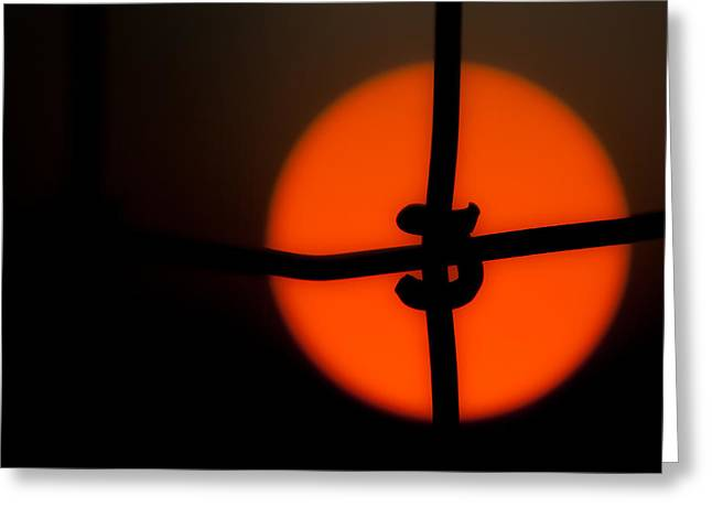 Sunset Through The Fence Greeting Card by Mark Alder