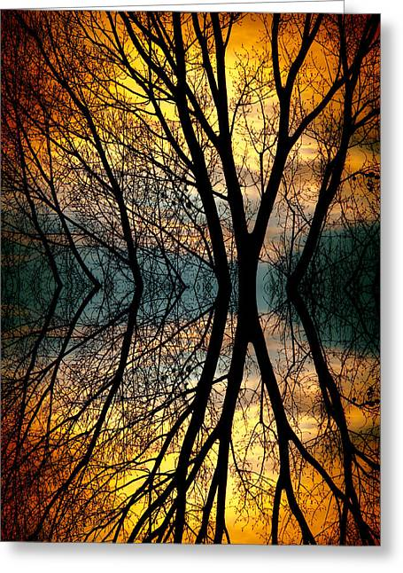 Sunset Tree Silhouette Abstract 3 Greeting Card
