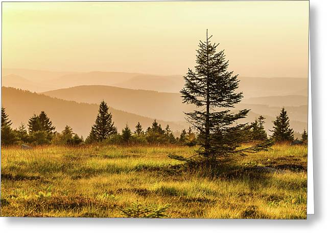 Sunset - Vosges Mountains Greeting Card by Paul MAURICE