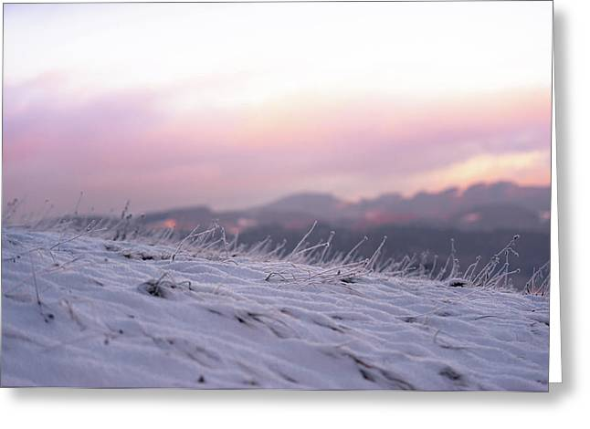 Sunset Winter Field Greeting Card by Jenny Rainbow