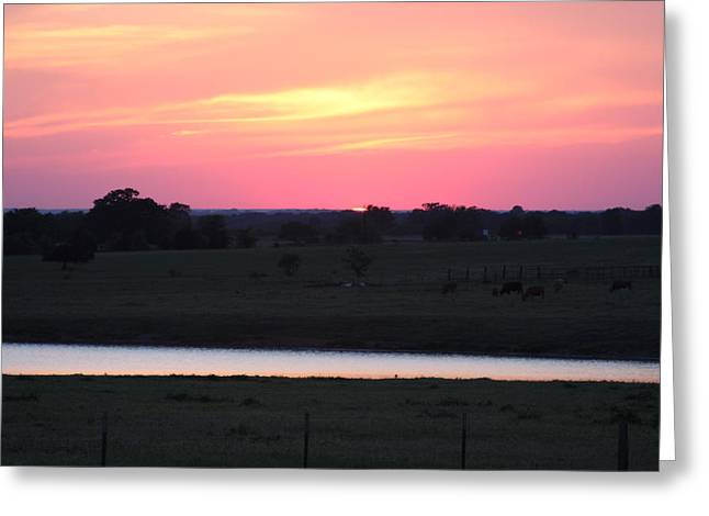 Sunset With Pond Greeting Card by Jonathan Kotinek