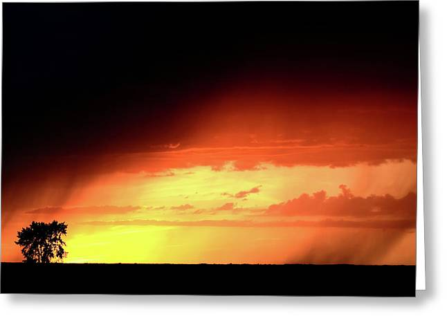 Sunset With Rain In Scenic Saskatchewan Greeting Card by Mark Duffy