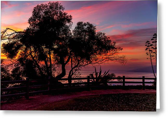 Sunset Silhouettes From Palisades Park Greeting Card