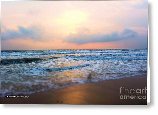 Sunsetting Beach Greeting Card