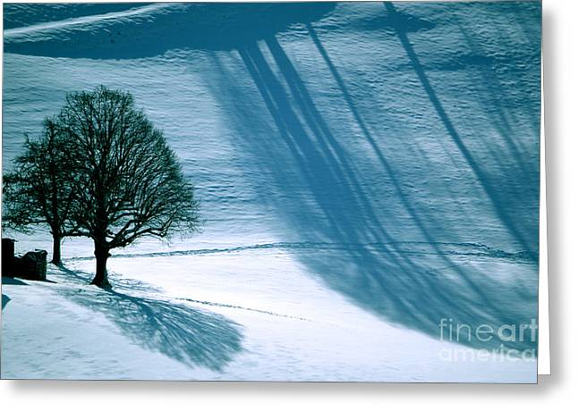 Greeting Card featuring the photograph Sunshine And Shadows - Winterwonderland by Susanne Van Hulst
