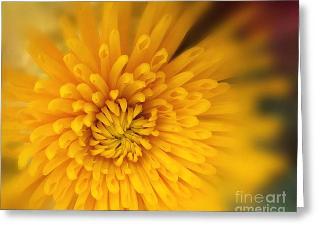 Sunshine Mum Greeting Card by Kathy M Krause