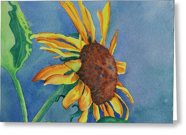 Sunshine On My Shoulders Greeting Card by Tracy L Teeter