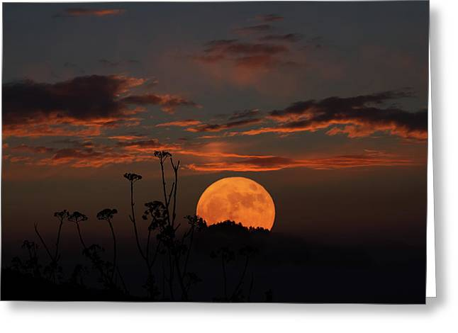 Super Moon And Silhouettes Greeting Card