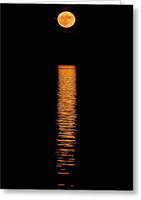 Super Moon Reflections Greeting Card by Paul Freidlund