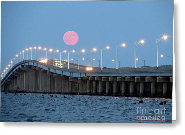 Greeting Card featuring the photograph Super Moon  by Robert Henne