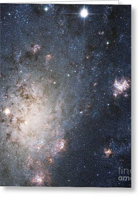 Supernova 2004dj, Outskirts Of Ngc 2403 Greeting Card