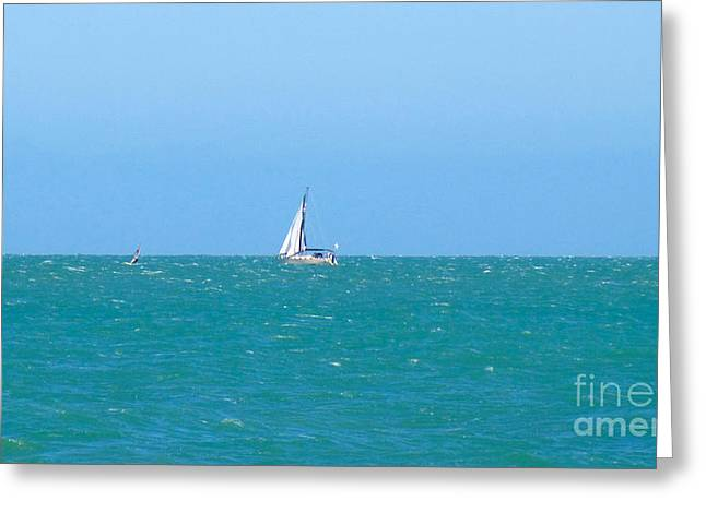 Surf And Sail The Sea Greeting Card