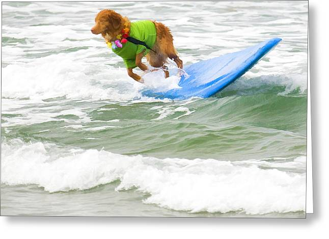 Surf Dog - Outta Here Greeting Card