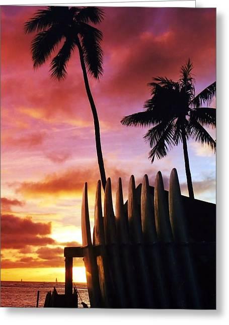 Surfboard Sunset Greeting Card by DJ Florek