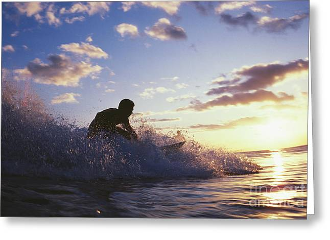 Surfer At Sunset Greeting Card by Bob Abraham - Printscapes