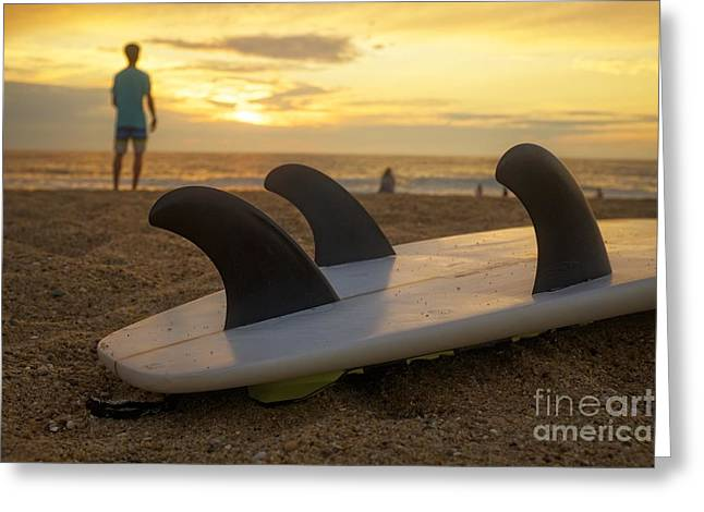 Surfing Sunset Greeting Card by Edward Fielding