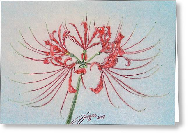 Surprise Lily Greeting Card by Beverly Fuqua