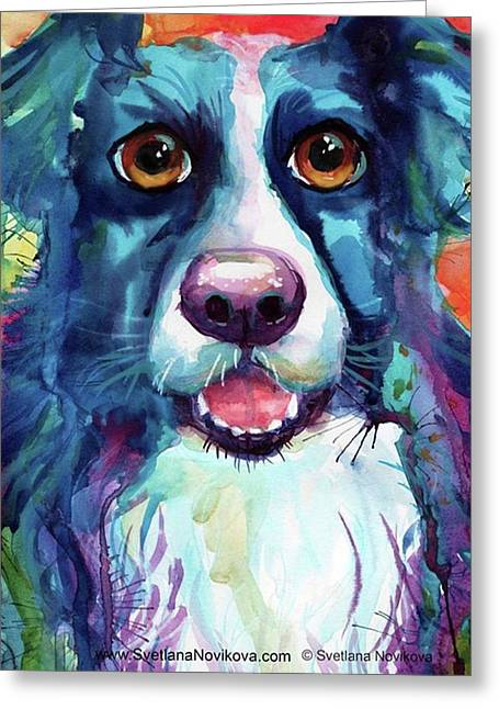 Surprised Border Collie Watercolor Greeting Card