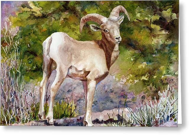 Surprised On The Trail Greeting Card by Anne Gifford