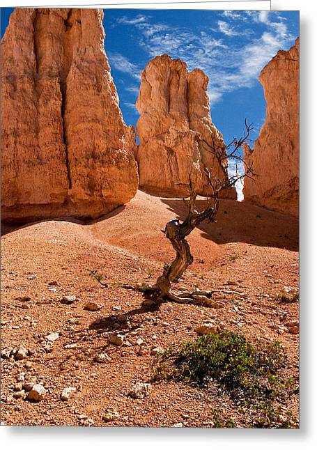 Surrounded By Hoodoos Greeting Card by James Marvin Phelps