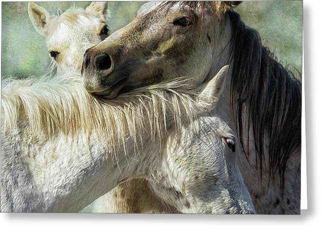 Surrounded By Love Greeting Card by Belinda Greb