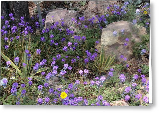Surrounded By Purple Flowers Greeting Card