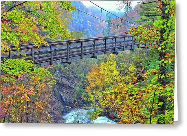 Suspension Bridge At Tallulah Gorge Greeting Card