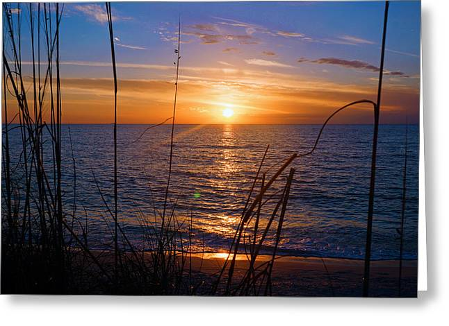Sw Florida Sunset Greeting Card