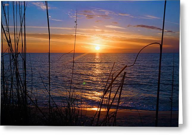 Sw Florida Sunset Greeting Card