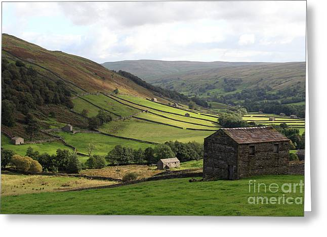 Swaledale  Yorkshire Dales Greeting Card