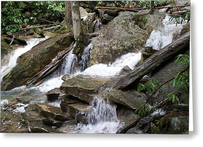 Swallow Falls Greeting Card by Heather Green