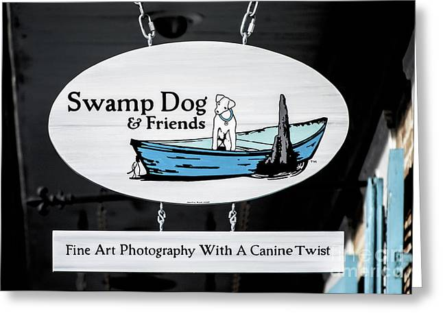 Swamp Dog And Friends Greeting Card