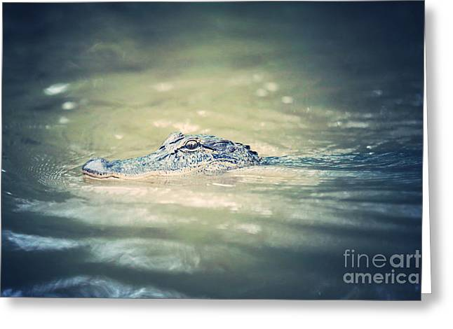 Swamp Gator Blues Greeting Card by Carol Groenen